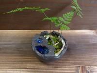 泉のある植木鉢